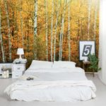 Wall Murals And Decals