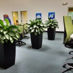 Business Office With Plants